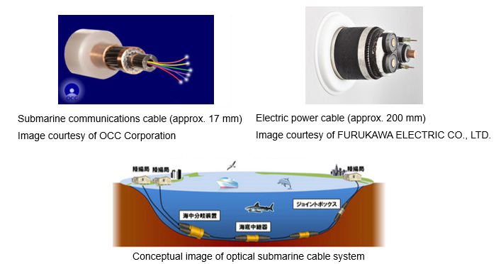 Submarine communications cable (approx. 17 mm) Image courtesy of OCC Corporation Electric power cable (approx. 200 mm) Image courtesy of FURUKAWA ELECTRIC CO., LTD. Conceptual image of optical submarine cable system